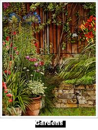 Portfolio Gardens